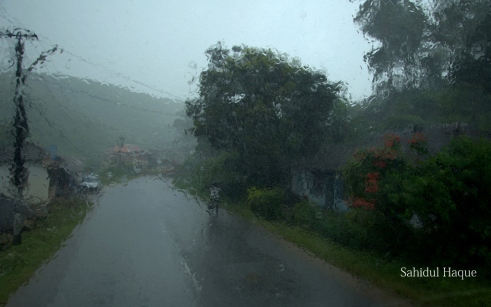 Street in Rains