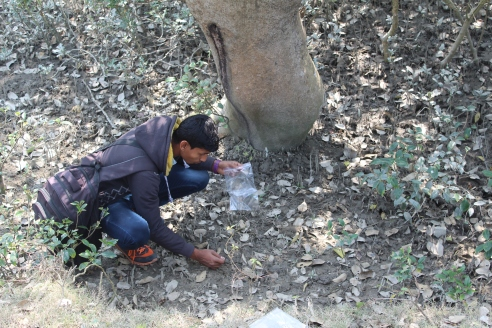 collection of soil sample near netadhopani camp in core forest