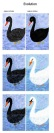Black Swan White Swan Collage ADG