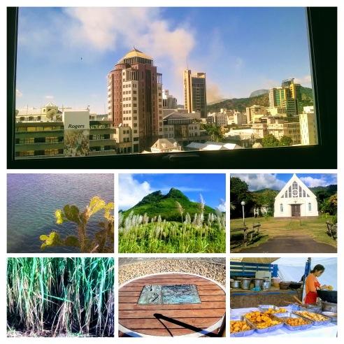 Mauritius Collage 2 Ananya Dutta Gupta
